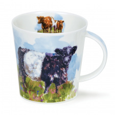 dunoon_belted_galloway